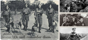 In the Line of Duty: Building a Memorial to the Unsung Canine Heroes ofWW1