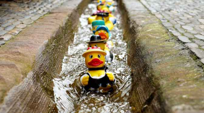 Rubber Ducks